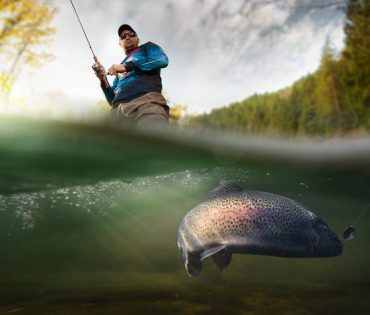Közeli horgászhelyek